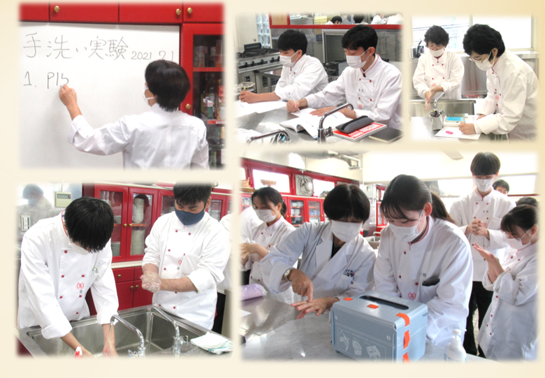 調理に大切な手洗い実験  食品衛生学実習